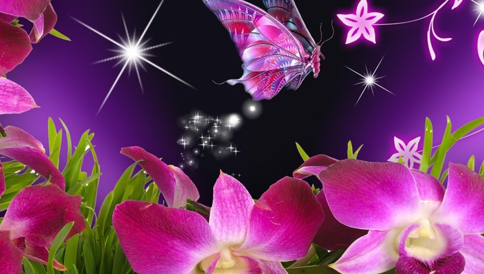 Orchids and butterfly for monarch wallpaper