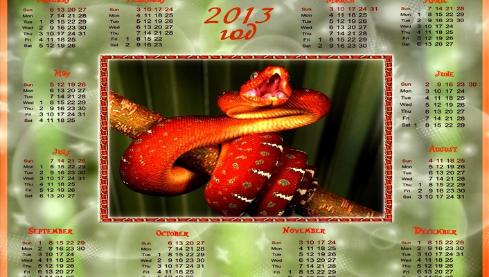 2013year of the snake wallpaper