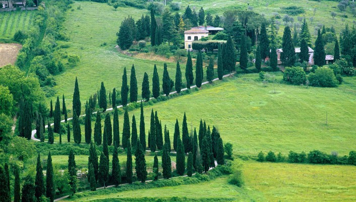 Italy landscapes trees wallpaper