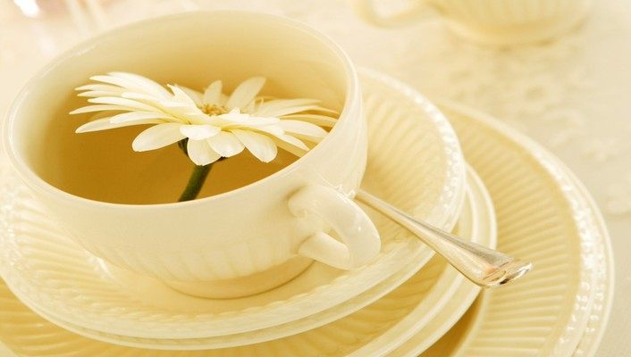 Flower in teacup wallpaper