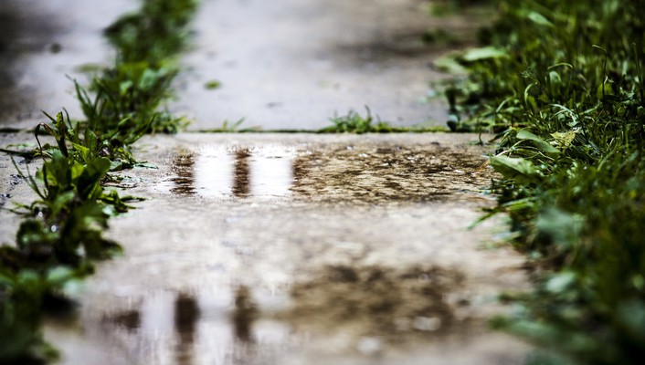 Depth of field grass pavement puddles wallpaper