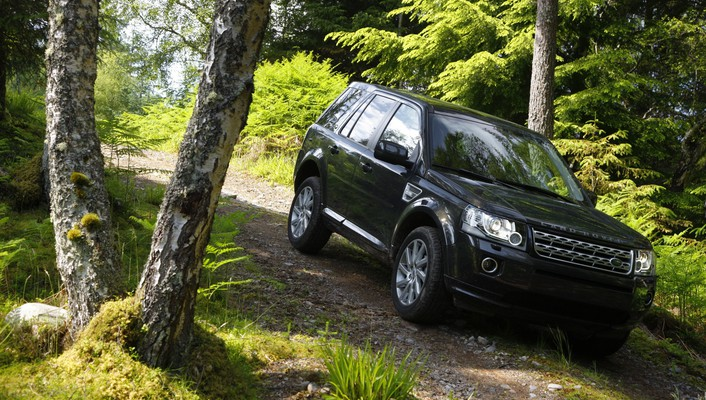 Freelander jeep land rover suv forests wallpaper