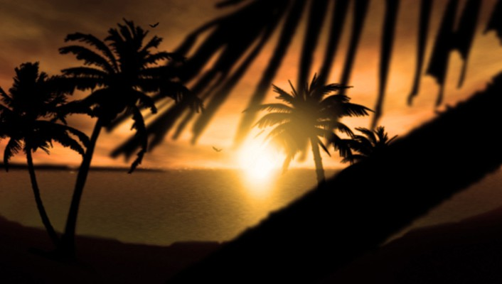 Sunset nature silhouette palm trees wallpaper