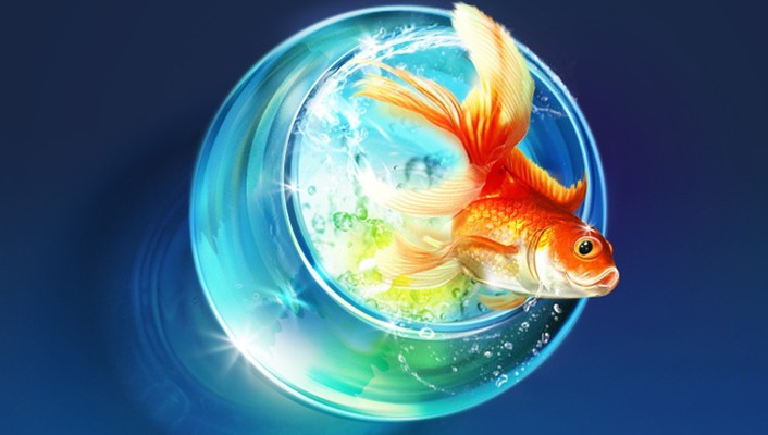 Fish artwork fishes wallpaper