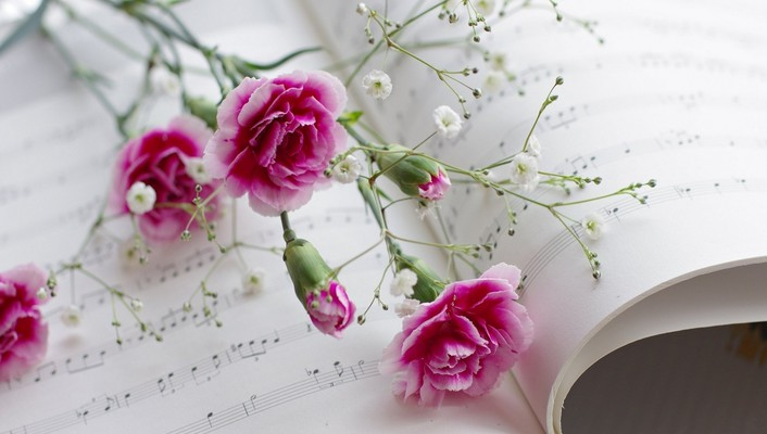 Pink flowers and music wallpaper