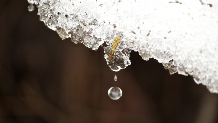 Ice macro melt snow water drops wallpaper