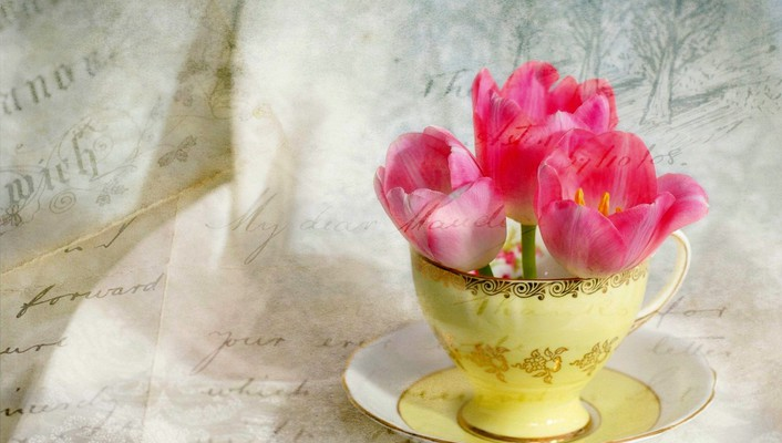 Cup of tulips wallpaper
