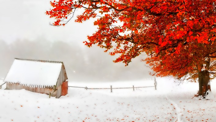 Autumn and winter wallpaper