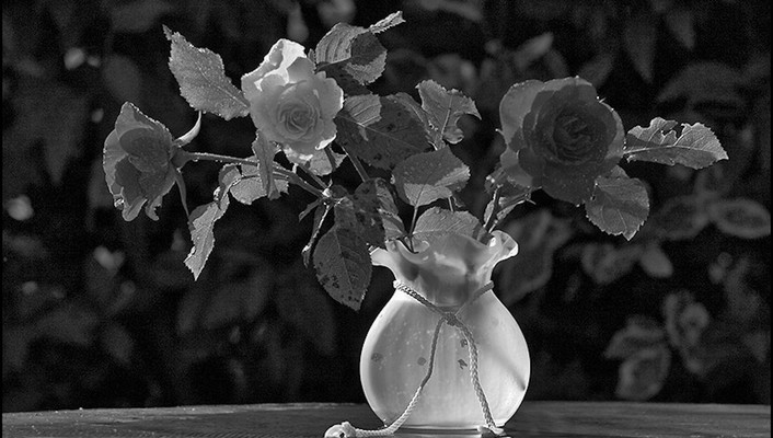 Still life in black and white wallpaper