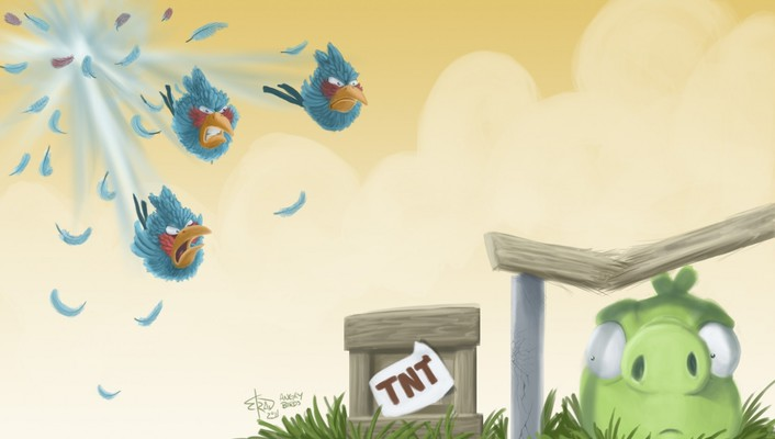 Blue angry birds wallpaper