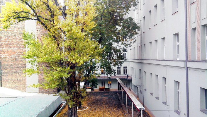 Leaves urban buildings autumn wallpaper