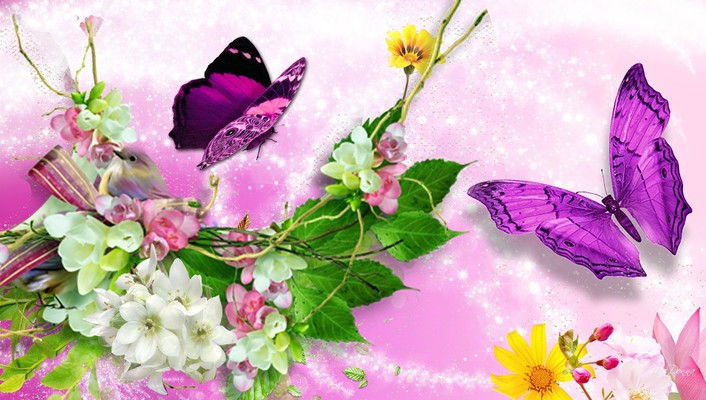 Bright bird butterflies blossoms wallpaper