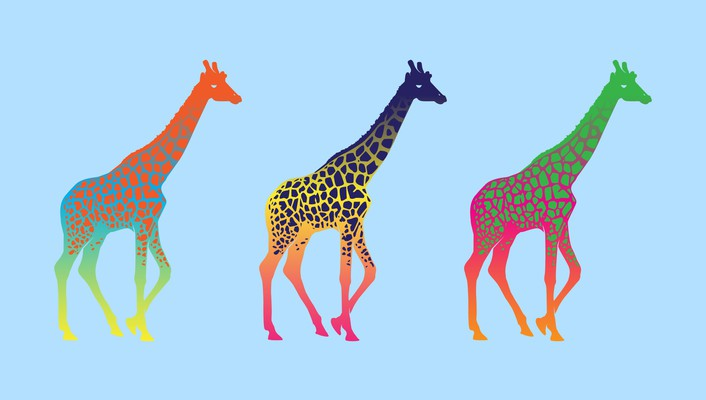 Colors giraffes wallpaper