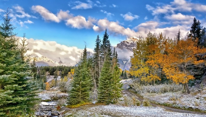 Wonderful mountain stream landscape hdr wallpaper