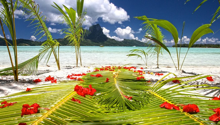 Preparations on beach by blue lagoon polynesia wallpaper