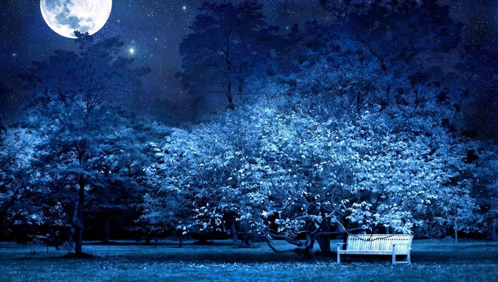 Moon bench blue forests garden wallpaper