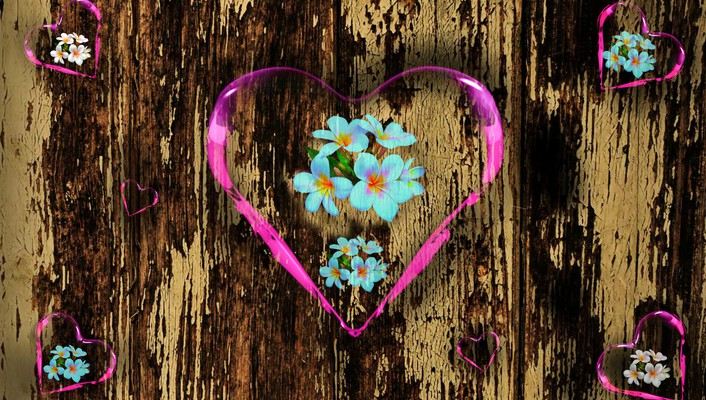 Hearts and plumeria for adelina wallpaper