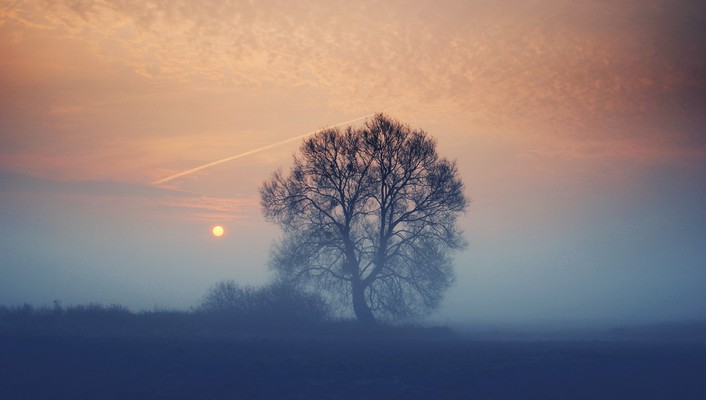 Clouds landscapes nature sun trees dawn fog wallpaper