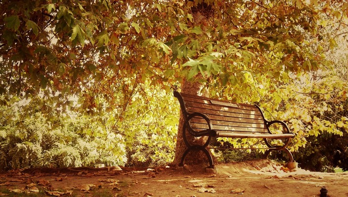 Autumn bench landscapes nature park wallpaper