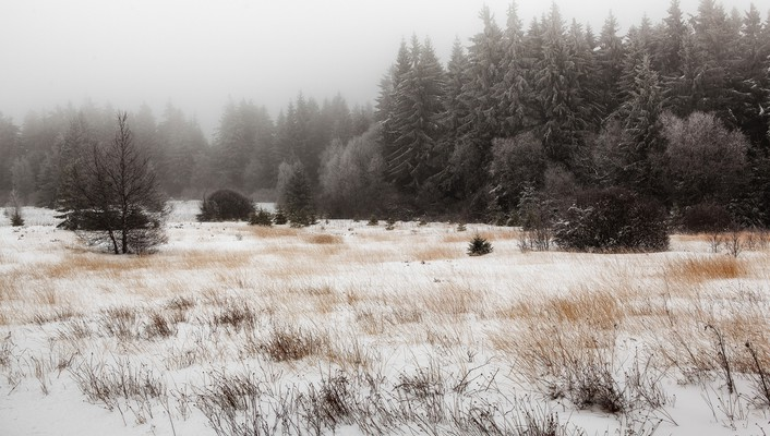 Landscapes winter snow forests wallpaper