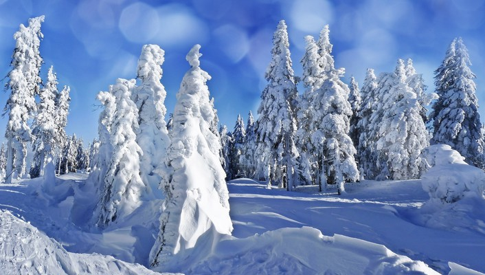 Landscapes nature winter wallpaper
