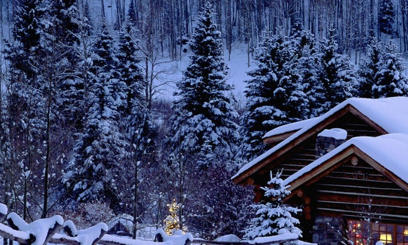 an essay on winter season Winter is the coldest season of the year december and january are chiefly the winter months during winter, cold winds blow from the north thick fog often hides the.